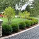 Country Club Road driveway landscaping
