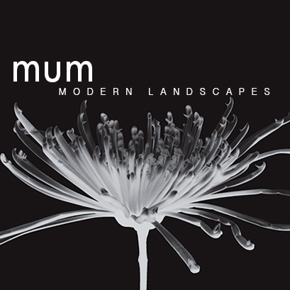 Welcome to Mum Modern Landscapes